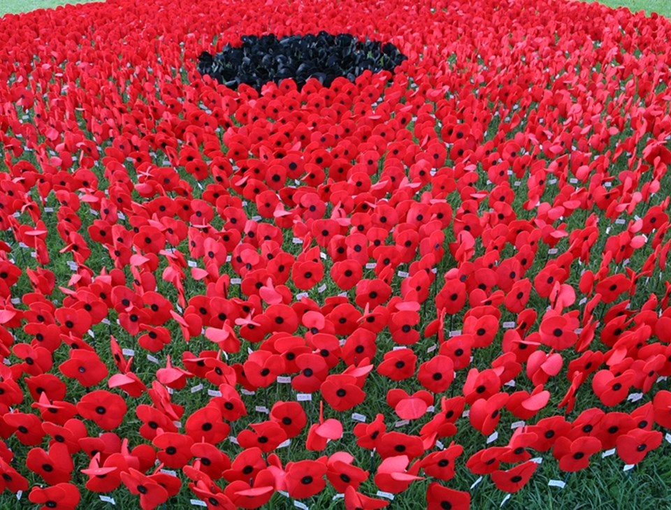 The Peace Poppy Photographic Exhibition