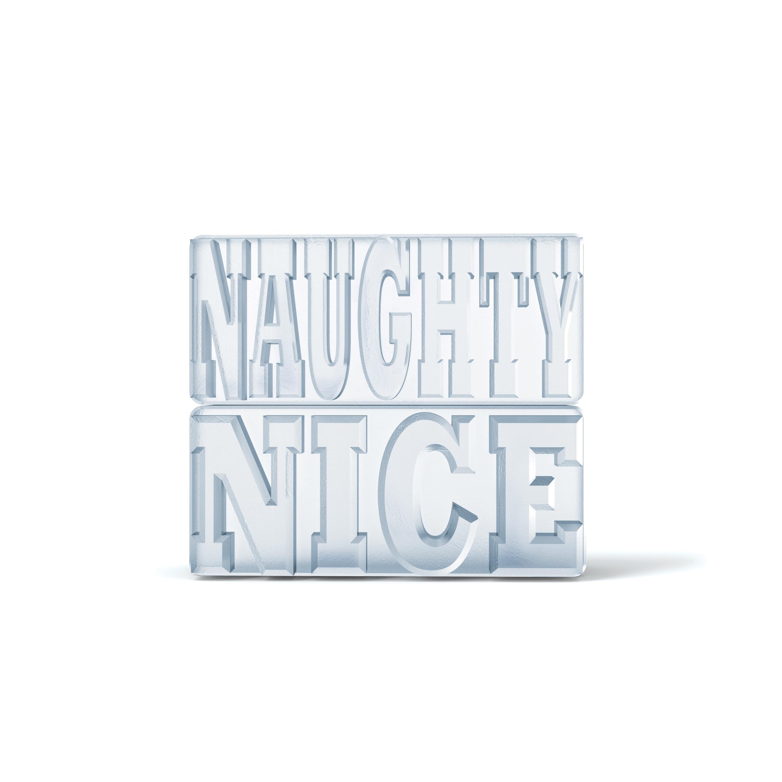 zk138_naughtyorniceice_b