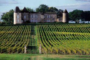 Chateau d'Yquem Vineyard Estate