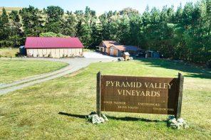 Pyramid Valley Estate.