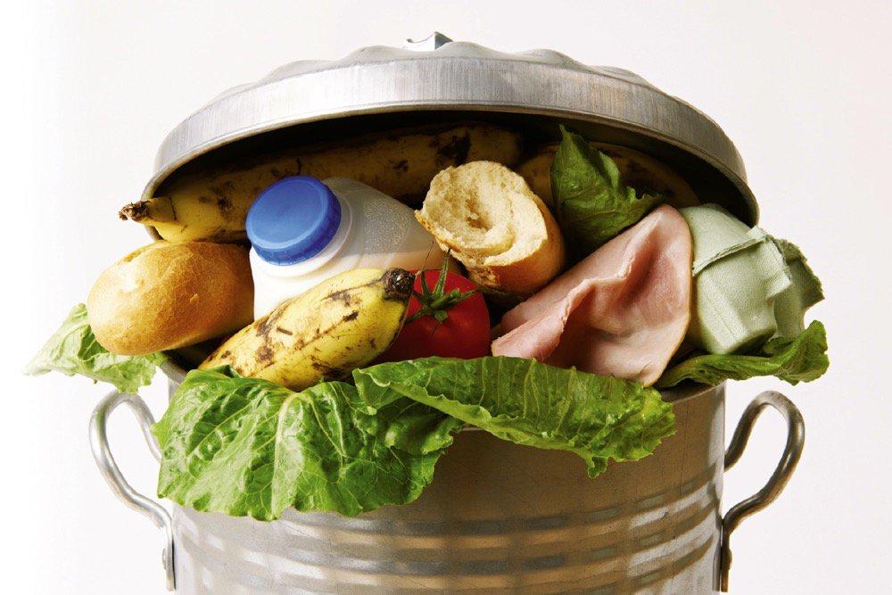 Food waste in a bin.