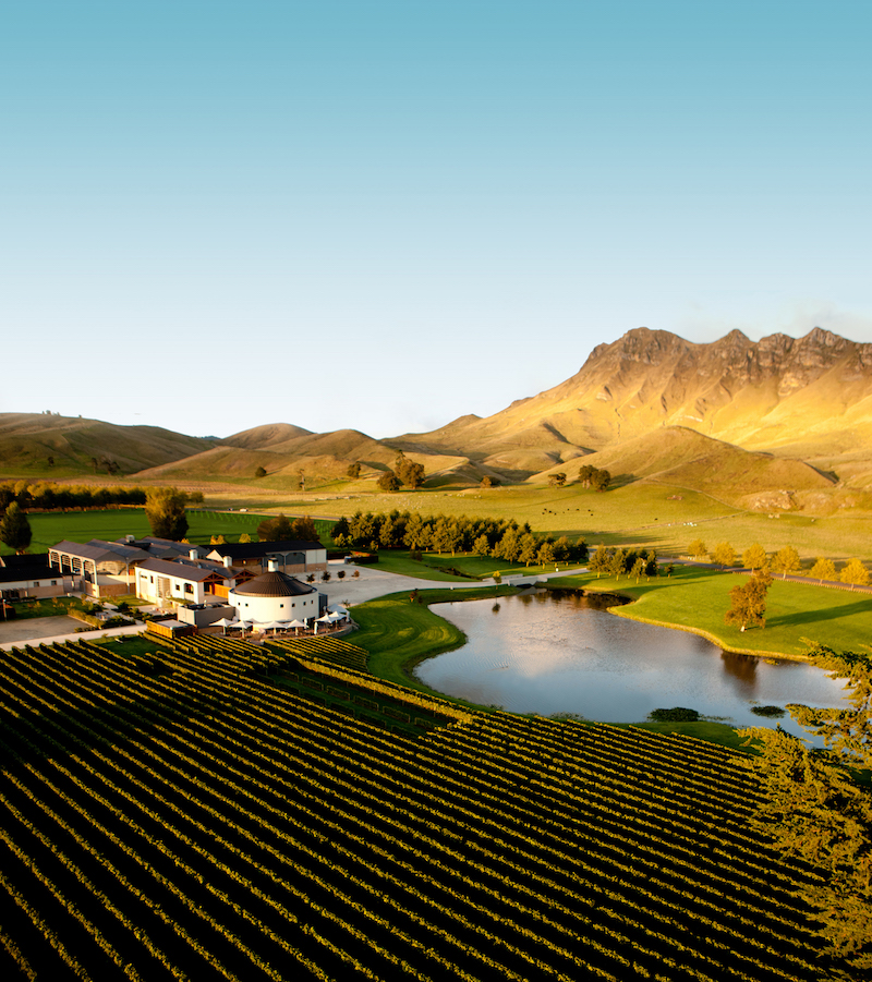 Aerial - Giants Winery Te Mata Peak