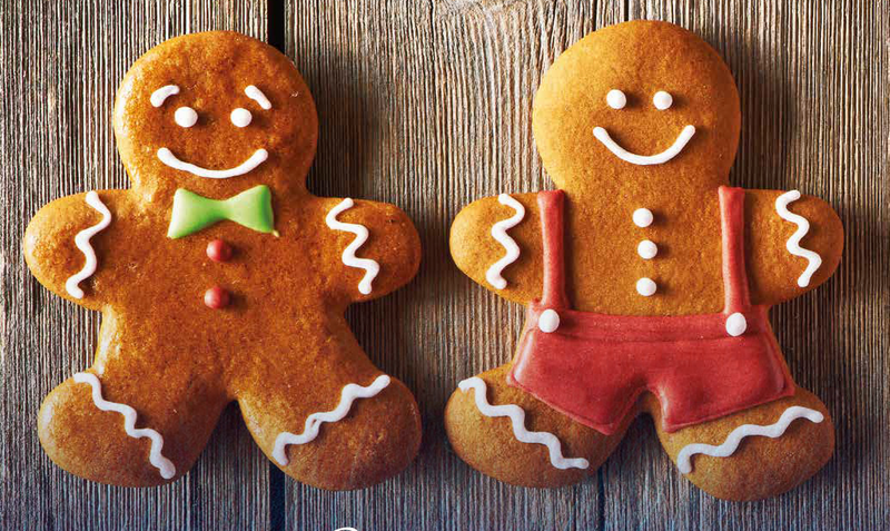 New Bakels Gingerbread Mix Restaurant Caf