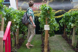 A commuter walks through the Brancott Estate pop-up vineyard at King's Cross Station, London