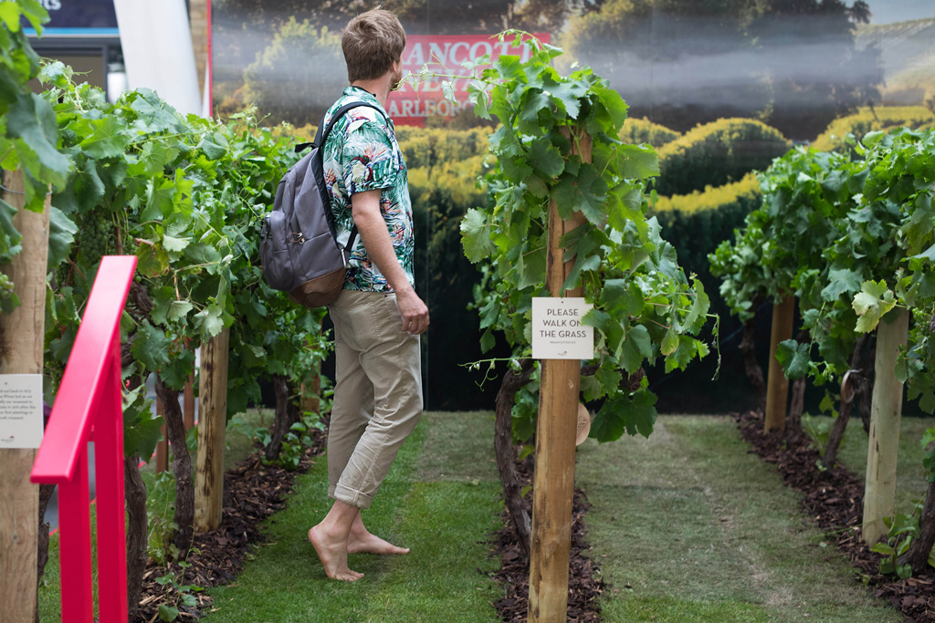 A commuter walks through the Brancott Estate pop-up vineyard at King's Cross Station, London