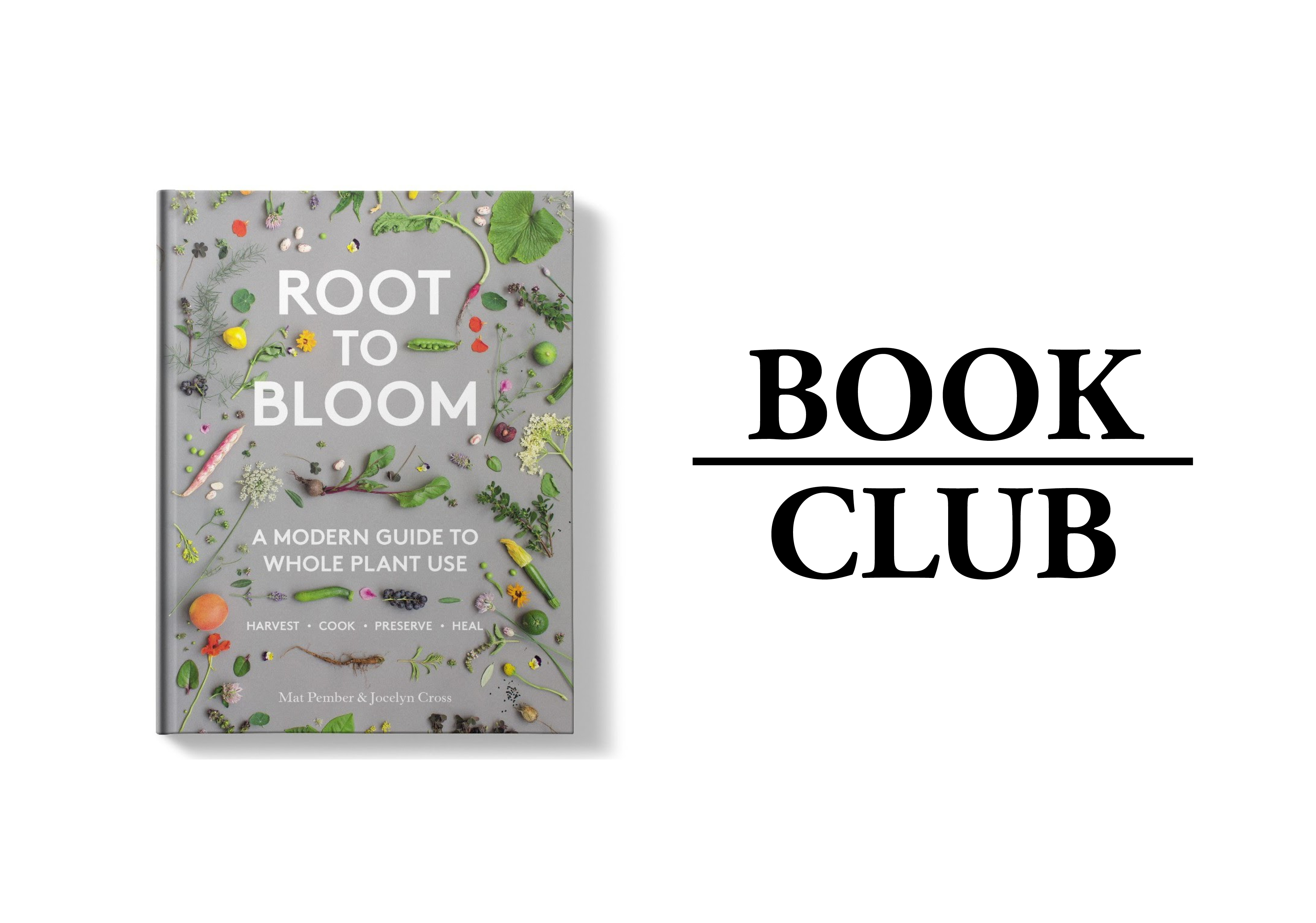 Root to Bloom by Mat Pember and Jocelyn Cross
