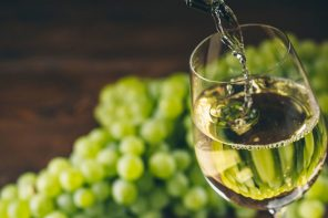 Wine industry set for further success