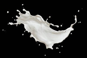 THE GREAT 'FAKE MILK' DEBATE