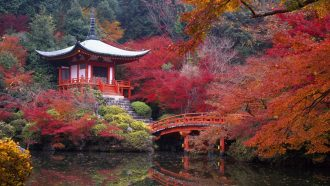A Japanese pagoda situated next to a river
