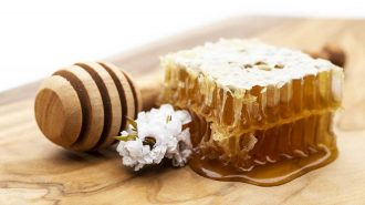 manuka honeycomb next to honey dripper and a manuka flower