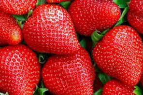 Needle Found In Strawberry Complaint Turns Out To Be False