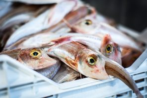 ALDI AUSTRALIA JOINS OCEAN DISCLOSURE PROJECT (ODP)