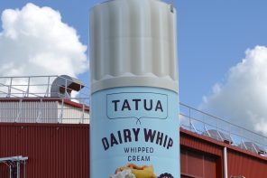 MAKEOVER FOR DAIRY WHIP