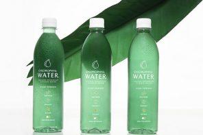 Chlorphyll water bottles