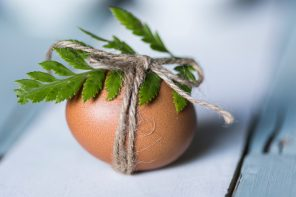 Egg with plant tied around it