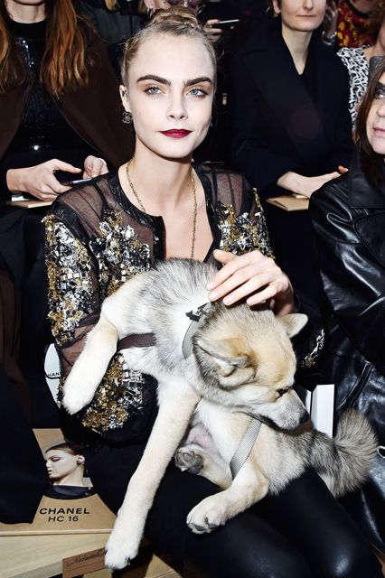 Cara Delevingne took her dog to the Chanel spring '16 haute couture show