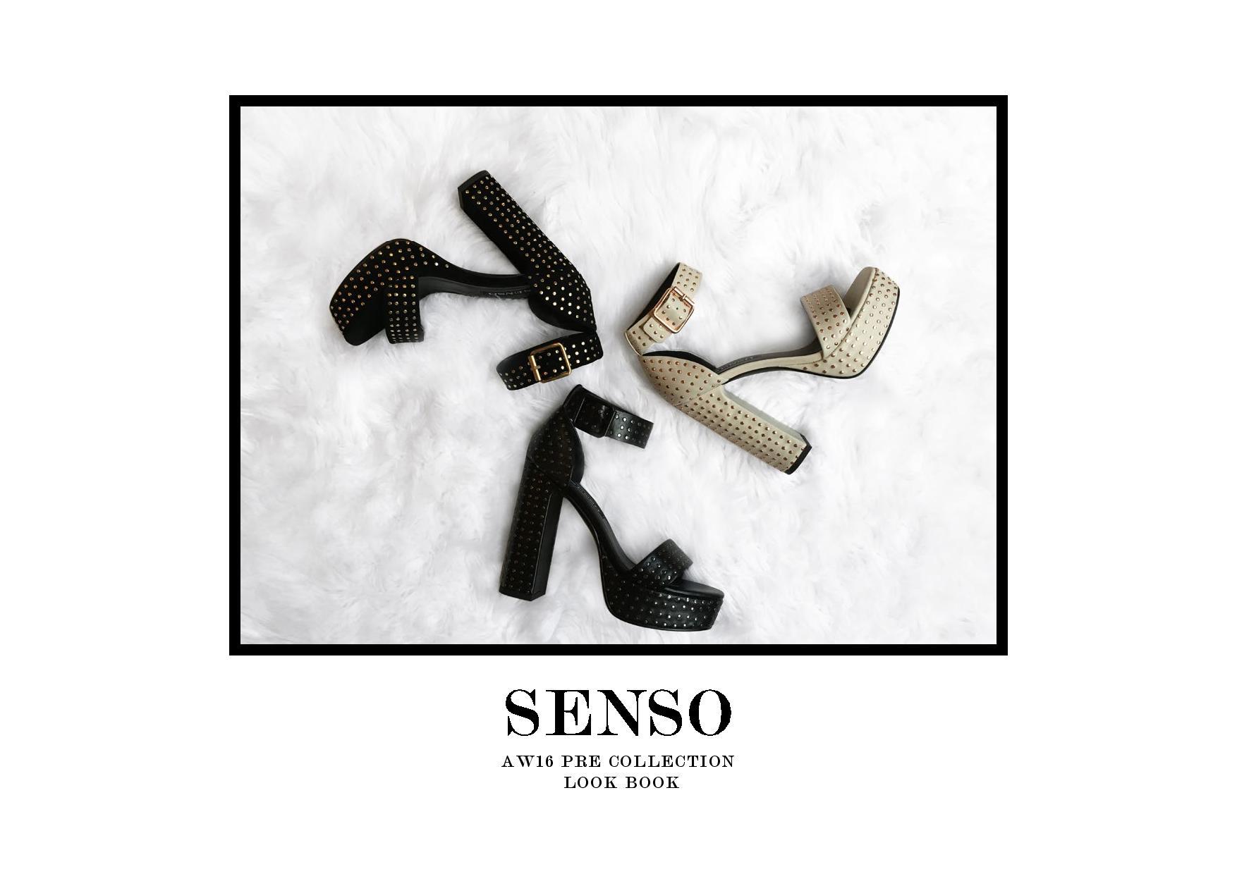 SensoPreFall16-page-001