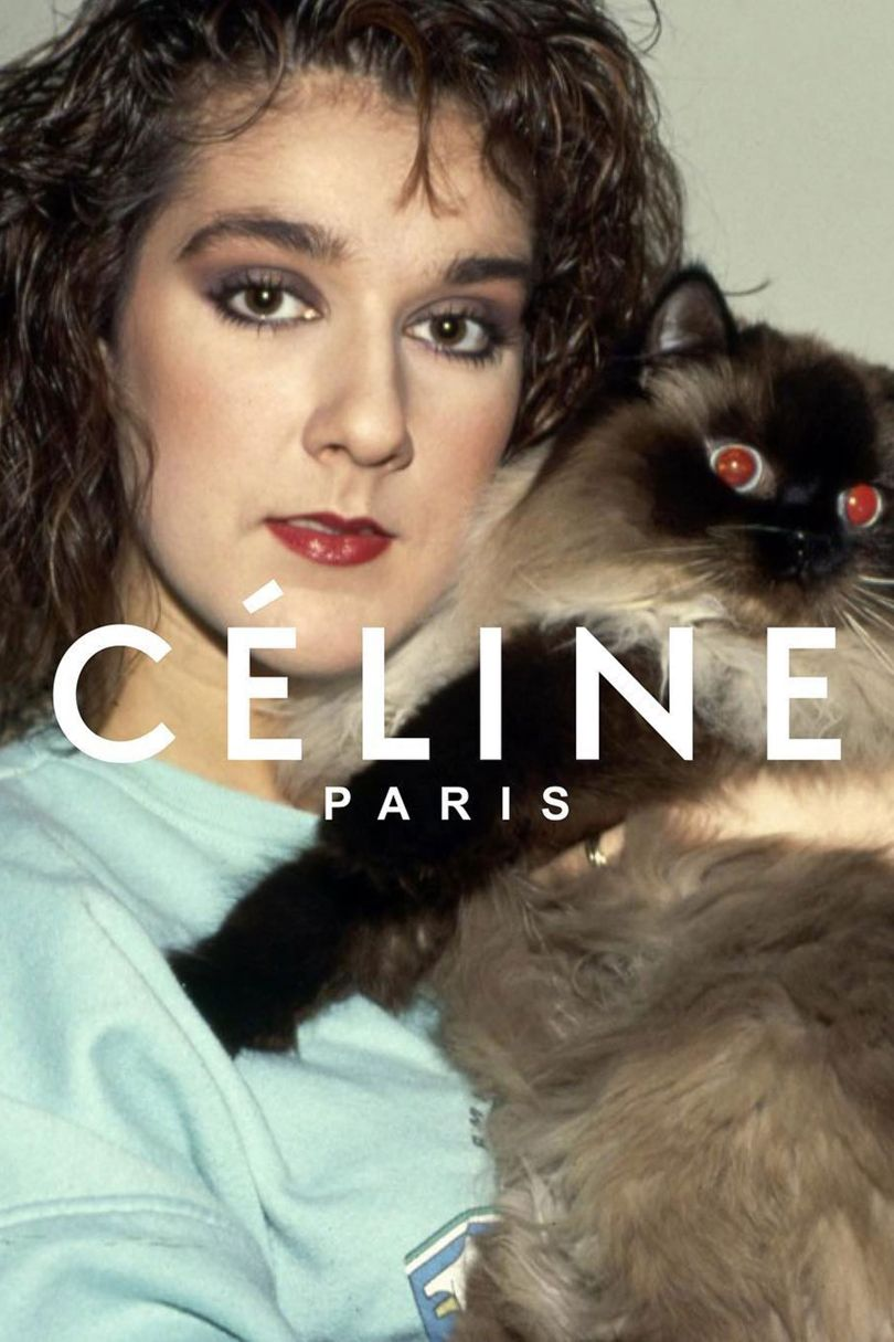 Celine Dion has taken fashion by storm lately, and been the inspiration for a spoof Céline campaign which went viral on Instagram.