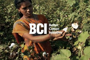 Better Cotton sources reach record number