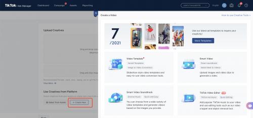 NZ TikTok Ads Manager Platform