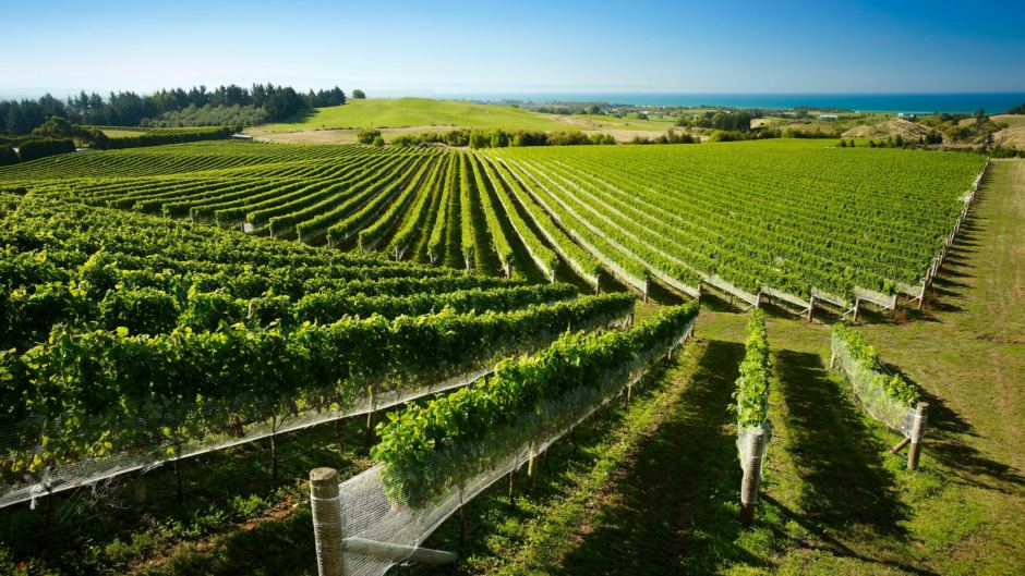 Tpp Agreement To Boost Wine Exports Supermarket News